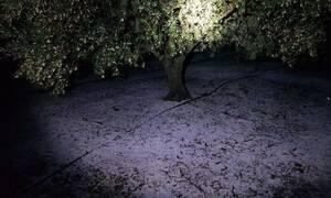 Κακοκαιρία «Διδώ»: Σφοδρή χαλαζόπτωση το βράδυ στην Κρήτη
