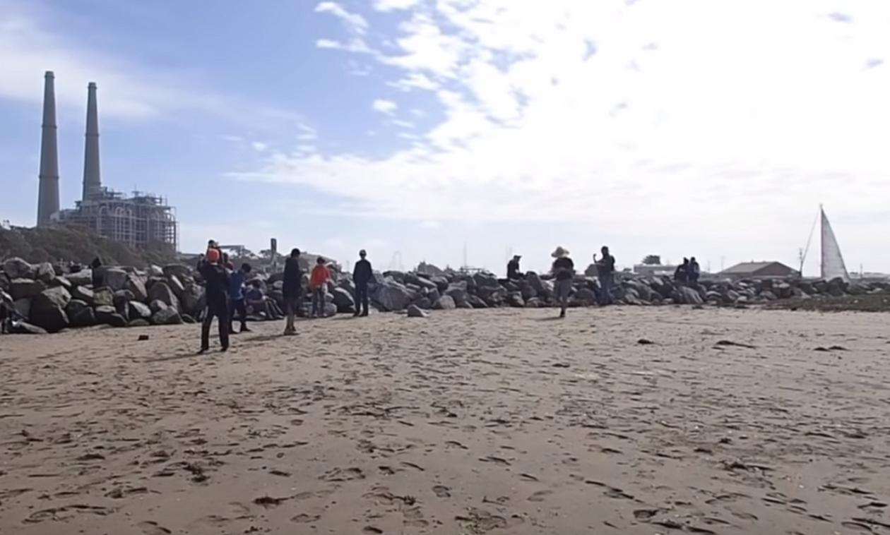 Χαμός σε παραλία: Η θάλασσα ξέβρασε εκατομμύρια «φαλλούς» (pics)