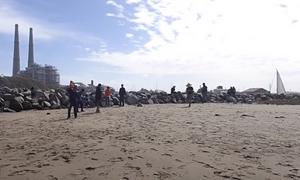 Χαμός σε παραλία: Η θάλασσα ξέβρασε εκατομμύρια «φαλλούς» (pics+vid)