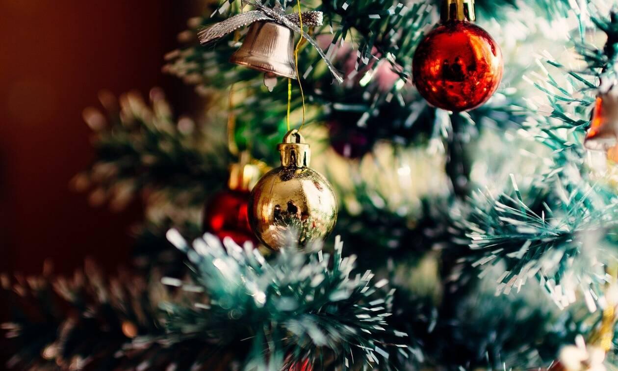 Τρόμος: Τι κρυβόταν στο χριστουγεννιάτικο δέντρο (photos)