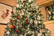 Γύρισε σπίτι της και αυτό που «πάγωσε» με αυτό που είδε στο χριστουγεννιάτικο δέντρο (photos)
