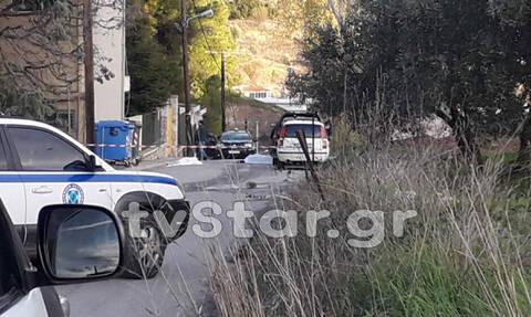 Βοιωτία: Οικογενειακή τραγωδία στις Θεσπιές - Νεκροί πατέρας και γιος σε ανταλλαγή πυροβολισμών