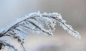 Καιρός: Ενδείξεις για κακοκαιρία κοντά στα Χριστούγεννα, αλλά και... άνοιξη έως το Σάββατο (video)