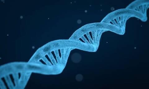 Απίθανο: Βρέθηκε τσίχλα 5700 ετών με ανθρώπινο DNA