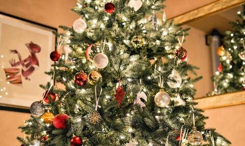 Δεν πίστευαν στα μάτια τους: Δείτε τι πετάχτηκε μέσα από χριστουγεννιάτικο δέντρο (pics)