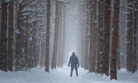 Βίντεο: Ανατριχιαστικός ήχος ακούγεται ξαφνικά μέσα από το δάσος!