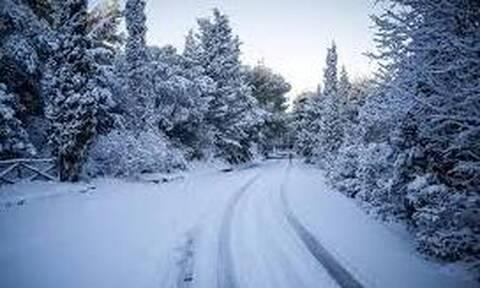Καιρός: Ανατροπή και με τη... σφραγίδα της ΕΜΥ. Χριστούγεννα με χιόνια στα ηπειρωτικά ορεινά!