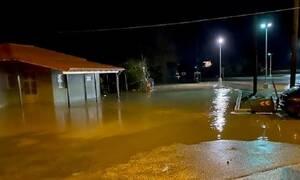 Άρτα: Πλημμύρες και ζημιές στο ορεινό επαρχιακό οδικό δίκτυο από την κακοκαιρία στην Άρτα (pics)
