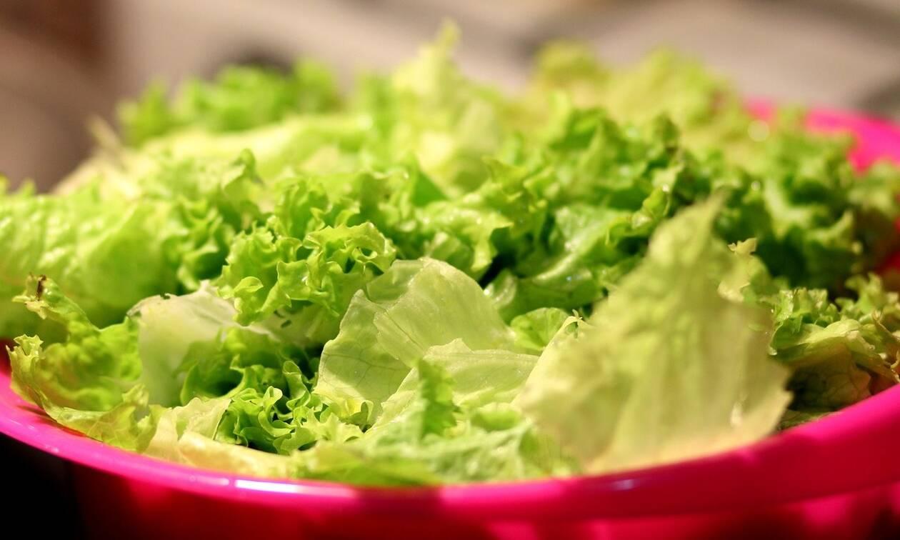 Απίστευτη υπόθεση: Βρήκαν 400 κιλά κάνναβης μέσα σε… σαλάτες!