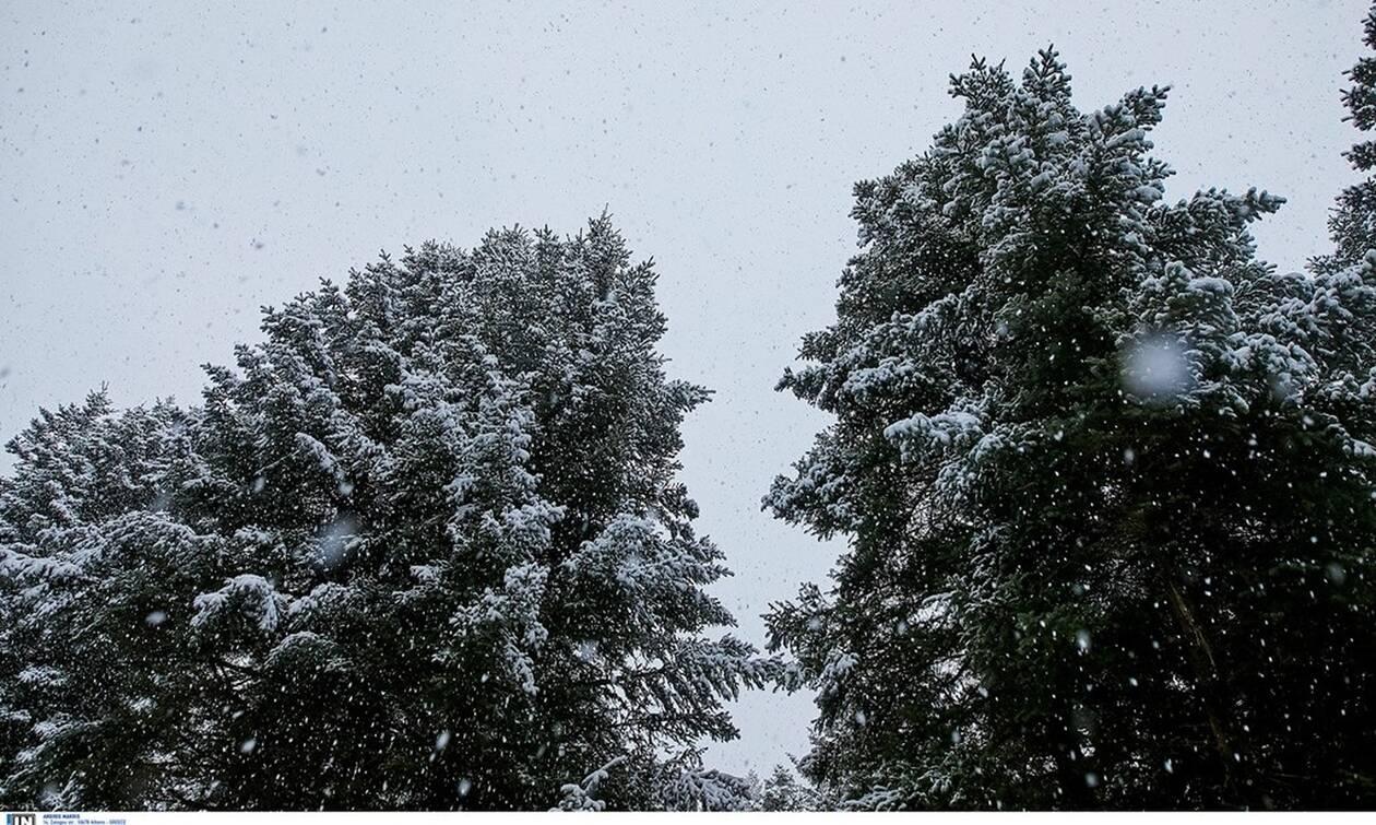 Καιρός Χριστούγεννα: Ψυχρή εισβολή με καταιγίδες, μποφόρ και χιόνια