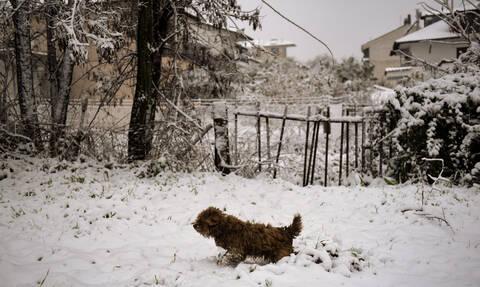 Καιρός: Ψυχρή εισβολή με χιόνια τα επόμενα 24ωρα –  Τσουχτερό κρύο μέχρι την Πρωτοχρονιά