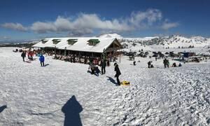Άνοιξε το χιονοδρομικό κέντρο στα Καλάβρυτα - Πλήθος κόσμου