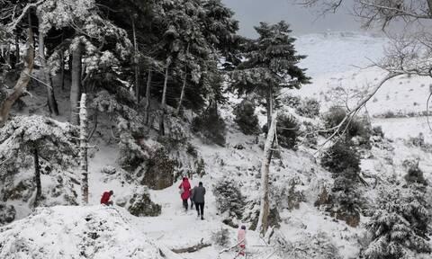 Κακοκαιρία - Ζηνοβία: Στον πάγο η χώρα μέχρι την Πρωτοχρονιά - Πού και πότε θα χιονίσει