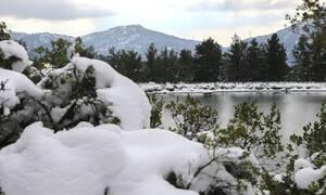 Καιρός – «Ζηνοβία»: Χιόνια, θυελλώδεις άνεμοι και τσουχτερό κρύο το Σάββατο