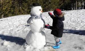 Κύπρος: Στα 15 εκατοστά το χιόνι στην πλατεία Τροόδους