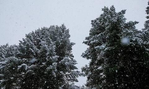 Ο καιρός σήμερα, Σάββατο 28 Δεκεμβρίου