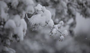 Δείτε LIVE πού χιονίζει ΤΩΡΑ σε όλη τη χώρα