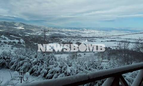 Snow disrupts transport and temperatures plunge as Zenobia system grips Greece