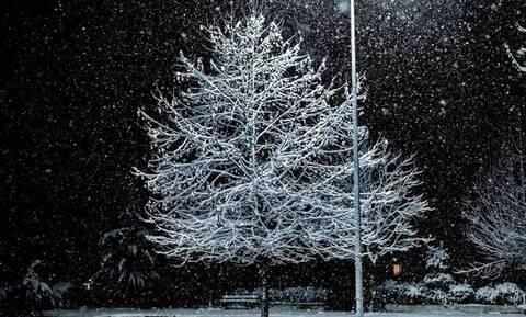 Κακοκαιρία: Προβλήματα λόγω χιονόπτωσης στην Παλαιά Εθνική Οδό Αθηνών - Θηβών
