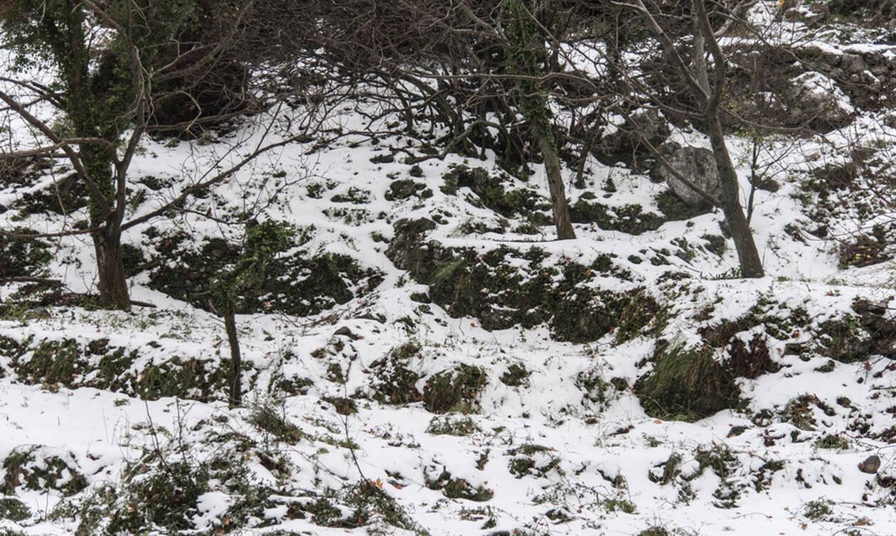 Κακοκαιρία: Χωρίς ρεύμα χωριά της Θήβας - Έντονη χιονόπτωση στην περιοχή