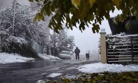 Κακοκαιρία «Ζηνοβία»: «Θερίζει» με ριπές ανέμου 111 χιλιομέτρων Αττική και Βοιωτία