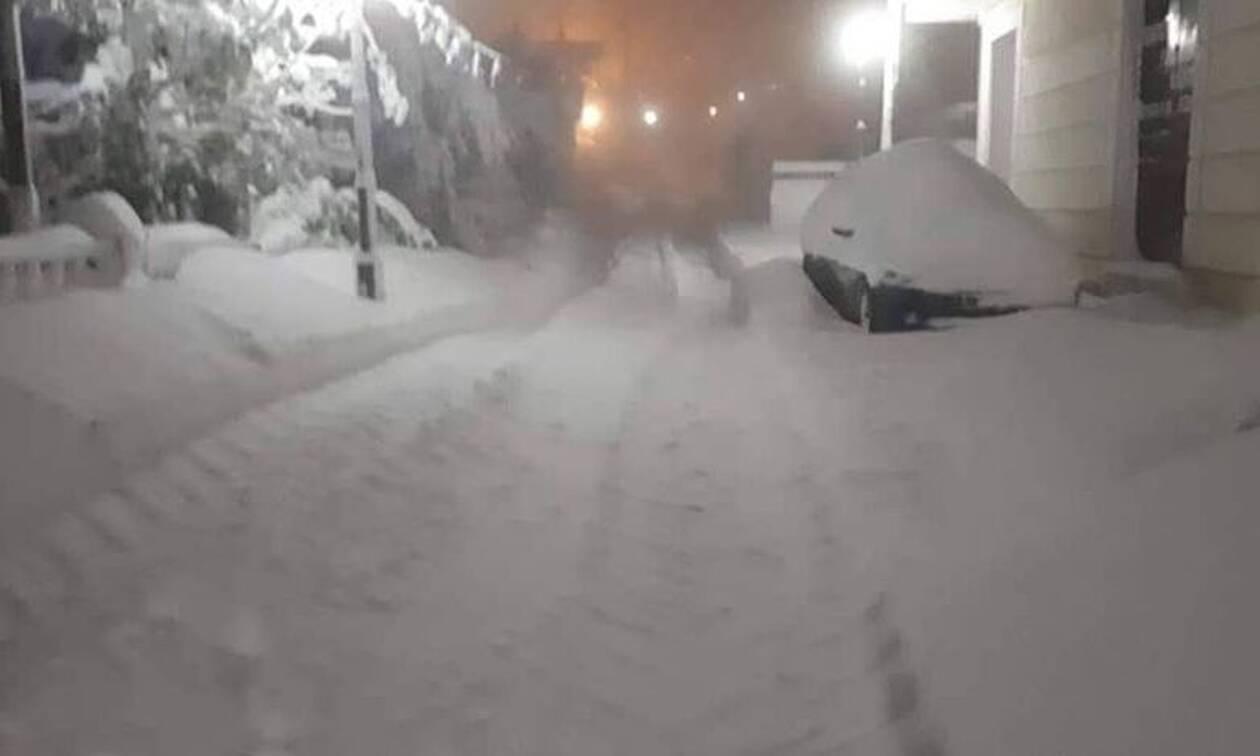 Καιρός ΤΩΡΑ: «Θάφτηκε» στο χιόνι η Θήβα – Πάνω από 80 πόντοι στο κέντρο της πόλης