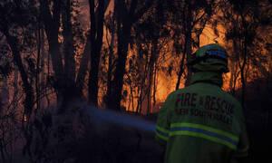 Απόκοσμο τοπίο στη Νέα Ζηλανδία: Κι όμως για αυτή την εικόνα ευθύνεται η Αυστραλία