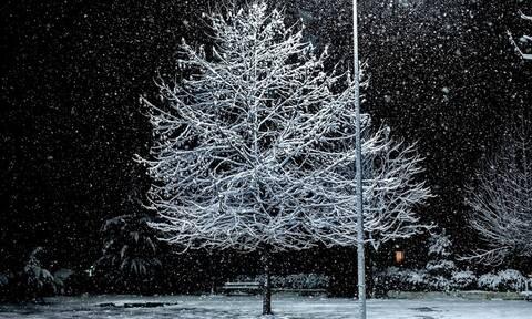 Καιρός: «Σκέπασε» τη χώρα ο «Ηφαιστίων» - Λευκό τοπίο στη μισή Ελλάδα- Χιονίζει στην Πάρνηθα