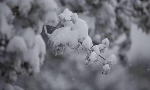 Καιρός: Απίστευτη χιονόπτωση στην Αρβανίτσα Βοιωτίας – Εντυπωσιακό βίντεο