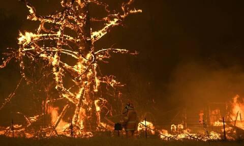 Αυστραλία: Συγκλονίζουν οι φωτογραφίες από τους δορυφόρους - Στις φλόγες η μισή χώρα (pics)