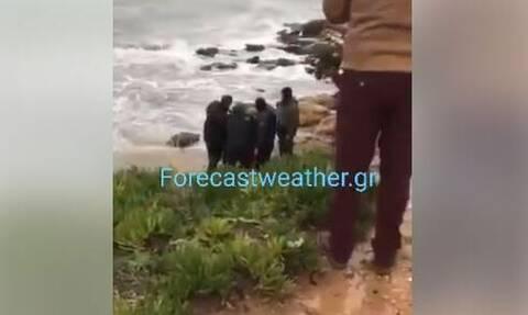 Κακοκαιρία - Αρτέμιδα: Εντοπίστηκε ο κωπηλάτης που αγνοούνταν - Δείτε βίντεο από τη διάσωσή του