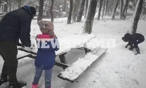 Καιρός: Χιόνια και στην Αττική σε λίγες ώρες - Πού θα το… στρώσει! (ΧΑΡΤΕΣ)