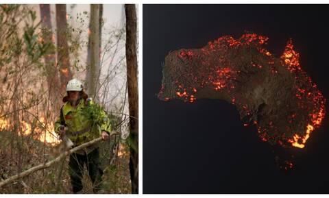 Στις φλόγες η Αυστραλία: Γάντια για κοάλα, ο κυκλώνας που φέρνει... την ελπίδα και οι viral εικόνες