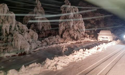 Καιρός - «Ηφαιστίων»: Θάφτηκαν στο χιόνι τα Βίλια - Βροχή και ψύχος αλλά ούτε... νιφάδα στην Αθήνα