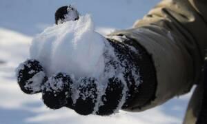 Απίστευτο! Δείτε πώς έγιναν τα χέρια μαθήτριας που έπαιζε με το χιόνι (ΣΚΛΗΡΕΣ ΕΙΚΟΝΕΣ)