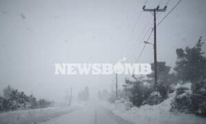 Κακοκαιρία Ηφαιστίων: Πού υπάρχουν προβλήματα στην ηλεκτροδότηση - Στους δρόμους η ΔΕΔΔΗΕ
