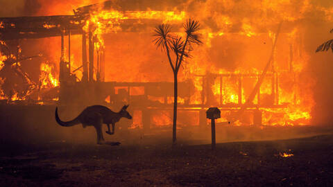 Μάθε γιατί η καταστροφή στην Αυστραλία σε αφορά