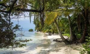 Φρίκη: Εξαφανίστηκαν όλοι από την παραλία όταν είδαν να βγαίνει αυτό από το νερό