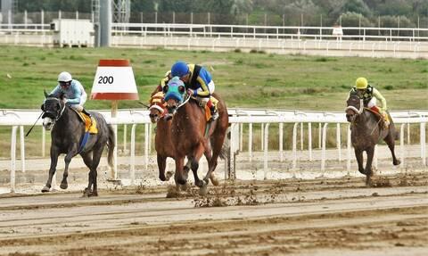 Markopoulo Park: Σημαντικά κέρδη για 15 νικητές του ΣΚΟΡ 6 στην 1η ιπποδρομιακή συγκέντρωση φέτος