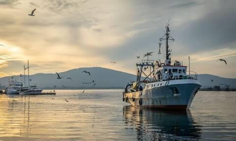 Θρυλική ψαριά: Έβγαλε σφυρίδα 150 κιλών! (pics)