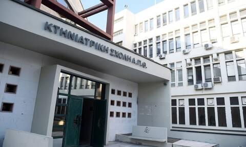 Σοκ στη Θεσσαλονίκη: Αυτοκτόνησε καθηγητής μέσα στην Κτηνιατρική ΑΠΘ