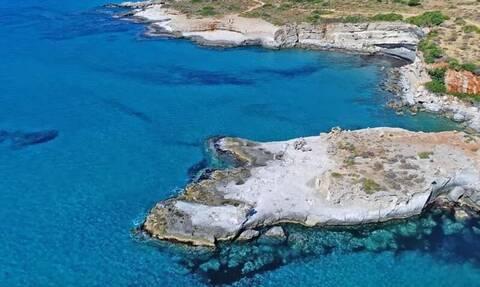 Λακωνία: Το απολιθωμένο φοινικόδασος των 3 εκατομμυρίων ετών από... ψηλά!