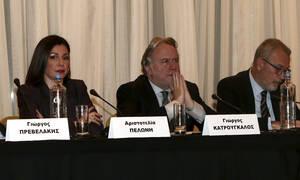 Η δημοσιογράφος Αριστοτελία Πελώνη αναλαμβάνει αναπληρώτρια κυβερνητική εκπρόσωπος