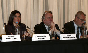Aristotelia Peloni appointed alternate government spokesperson