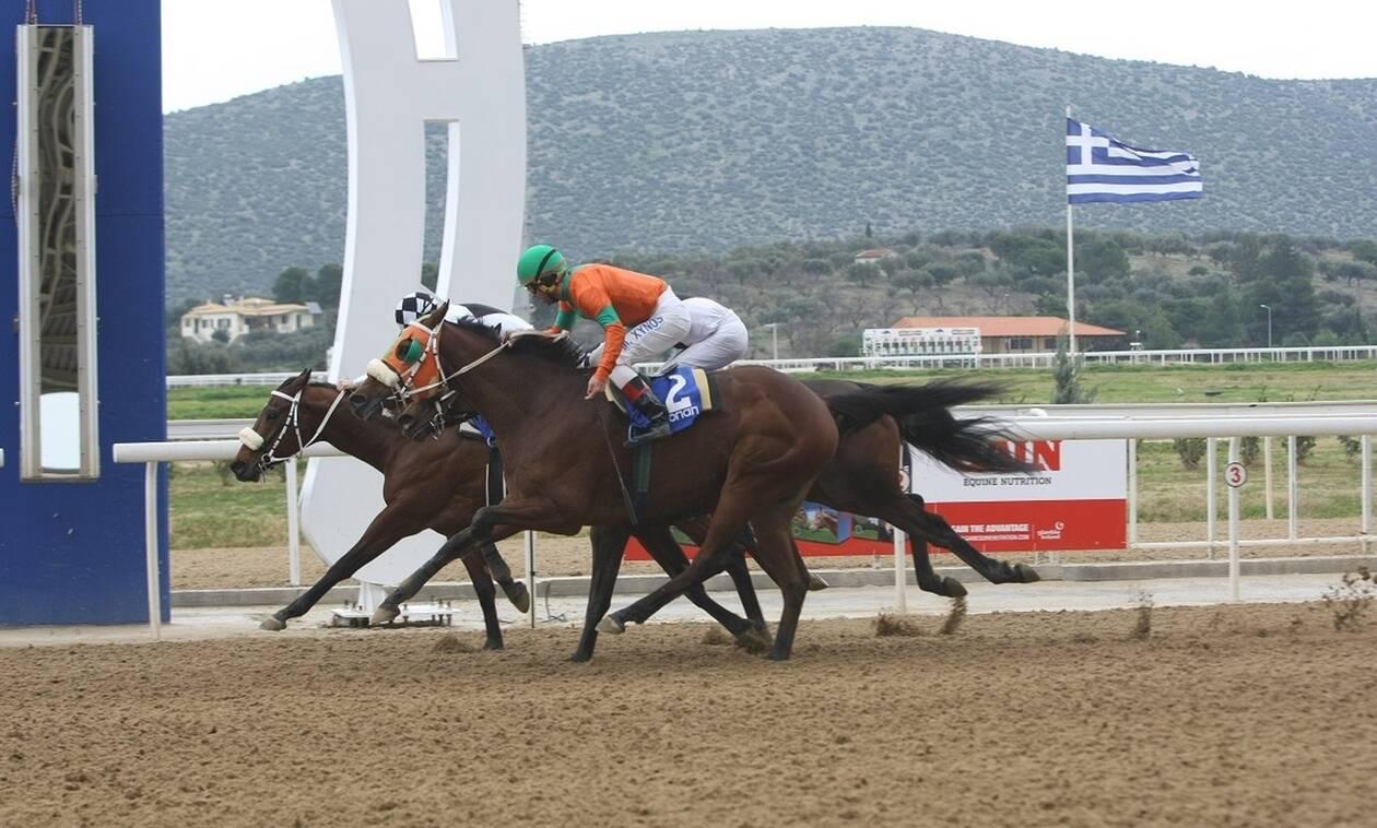 Μοιράζουν μεγάλα κέρδη οι ιπποδρομίες στοMarkopoulo Park