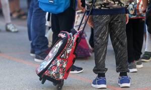 Σάλος στα Άνω Λιόσια: Καταγγελία για κατσαρίδα σε ψωμάκι μαθητή - Τι αναφέρει ο δήμος