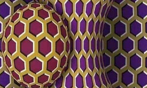 Απίθανο: Τι σημαίνει αν βλέπεις αυτή την εικόνα να κινείται και τι αν μένει ακίνητη