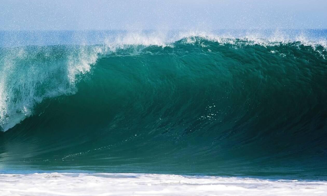 Φρίκη σε παραλία: Δείτε τι... βγήκε από τη θάλασσα (pics)