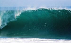 Φρίκη σε παραλία: Δείτε τι ξέβρασε η θάλασσα (pics)