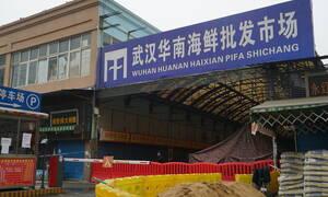 ΣΚΛΗΡΕΣ ΕΙΚΟΝΕΣ: Αυτή είναι η παράνομη αγορά ζώων, όπου ξεκίνησε ο νέος κοροναϊός